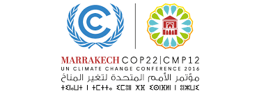 La IS en la COP22 en Marrakech